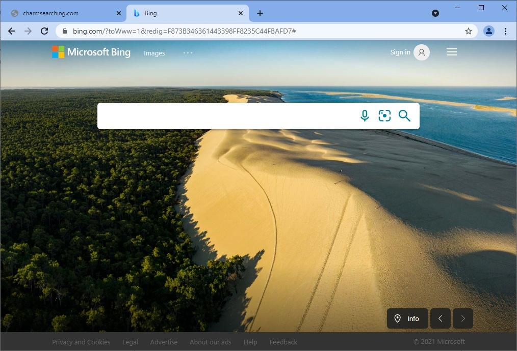 Charmsearching.com leads to Bing