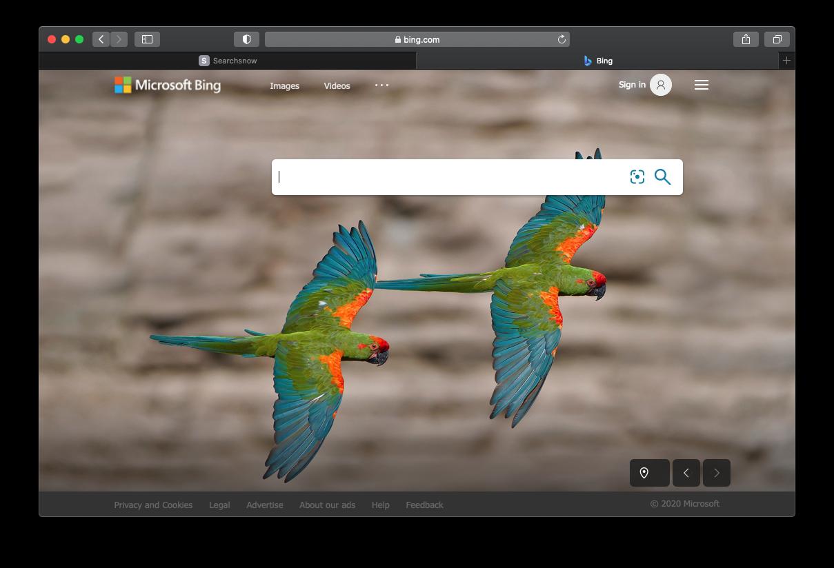 Searchbaron.com reroutes to Bing